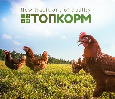 Сайт ТМ TOPKORM