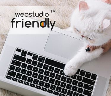 Landing page для Webstudio Friendly