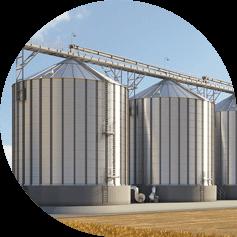 Создание сайта для сельскохозяйственного производителя